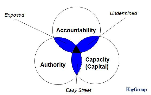 Hay Group - Leadership Clarity