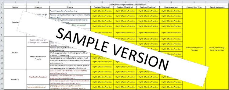 Sample Screen shot of the Excel Spreadsheet which forms part of the Selfy Resource