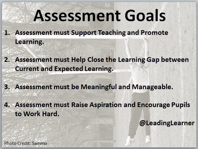 Assessment Goals