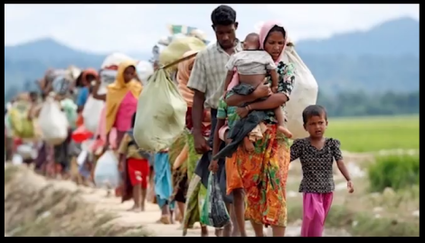Education Without Borders#Rohingya